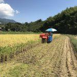 籾摺り2017(前半戦)と稲刈り2017(後半戦)